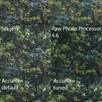 Fuji X-Trans RAW conversion - AccuRaw takes a swing