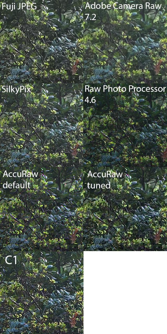 leaf_compare_v2 copy